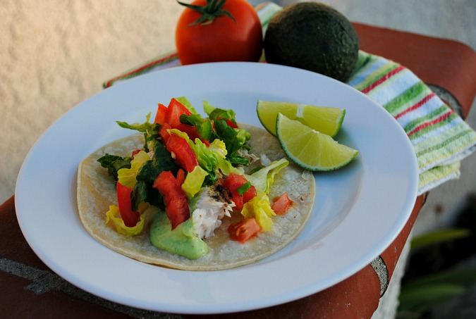 Grilled Mahi Mahi Soft Tacos |www.you-made-that.com