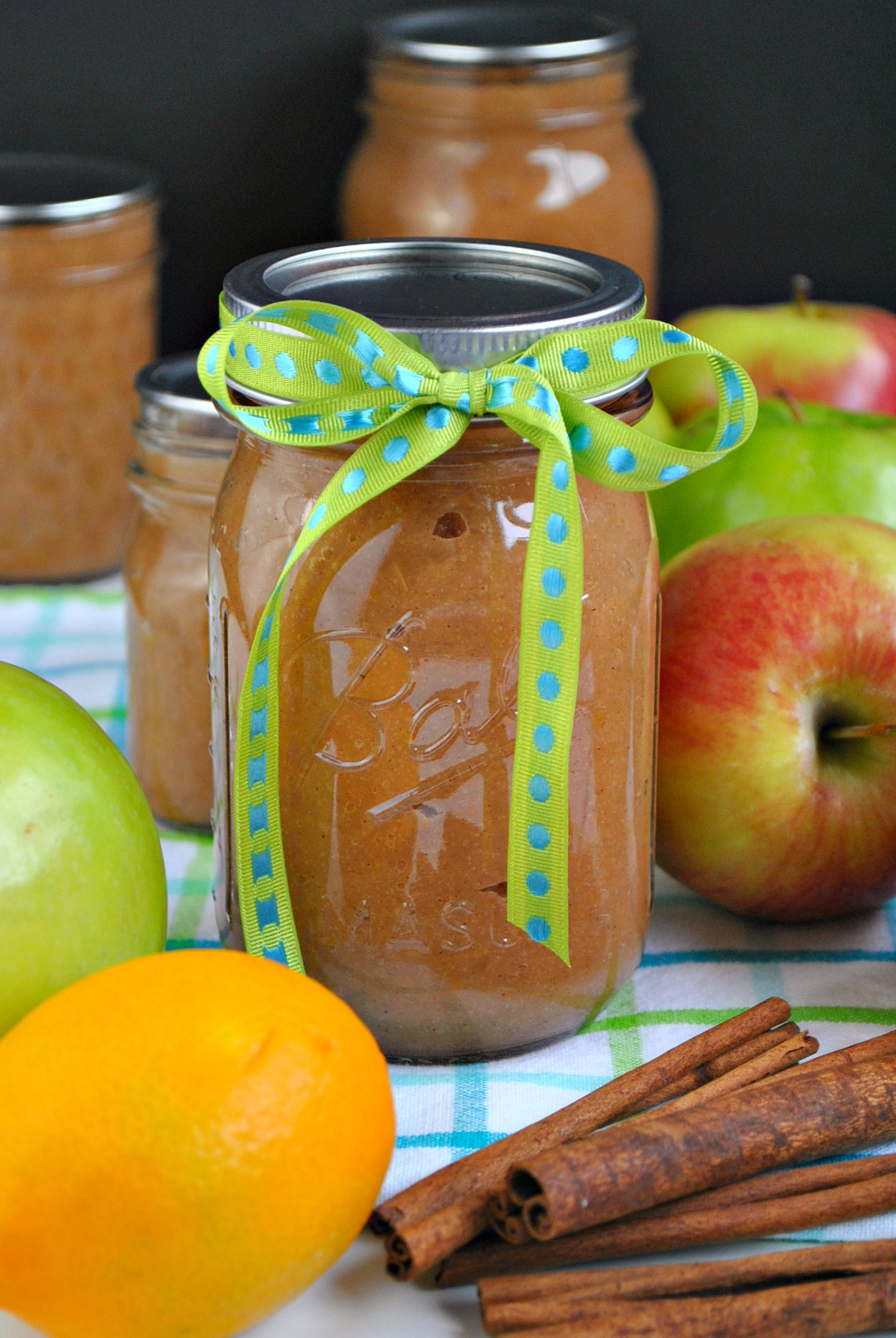 Homemade apple sauce  you-made-that.com