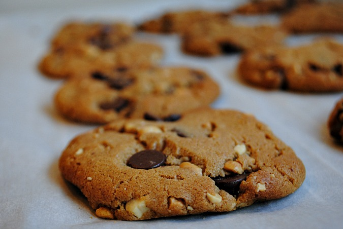 Gluten free peanut-butter chocolate chip cookies|www.you-made-that.com
