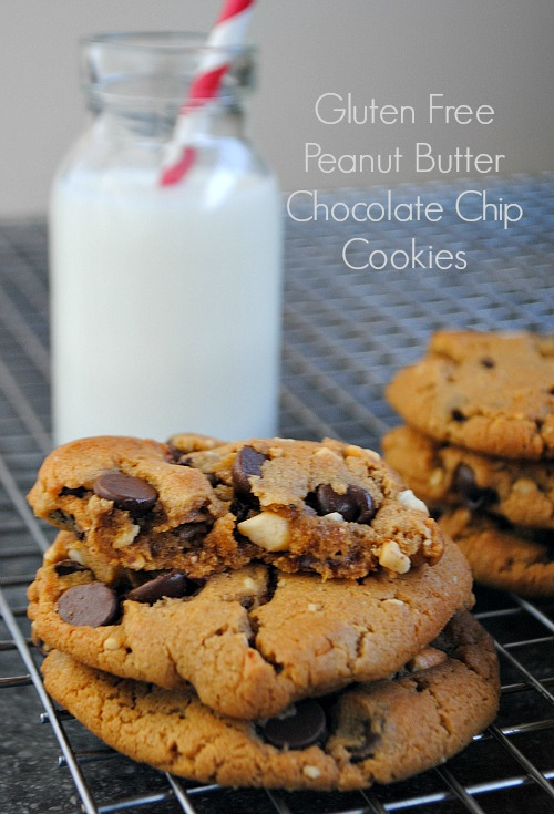 gluten free pb chocolate chip cookies|www.you-made-that.com