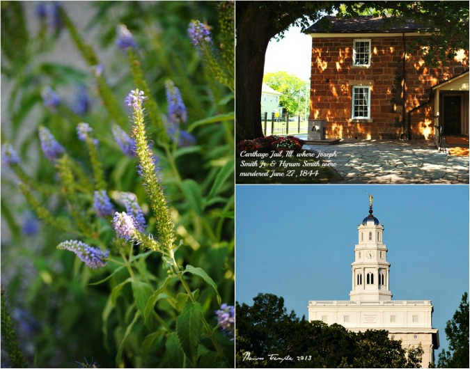 Nauvoo Collage