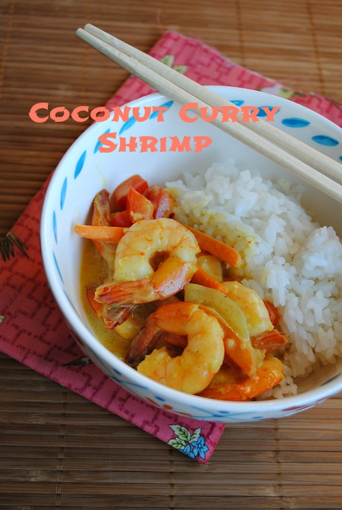 Coconut curry shrimp | you-made-that.com