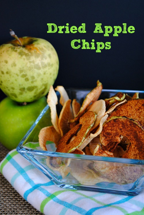 Dried Apple Chips | you-made-that.com