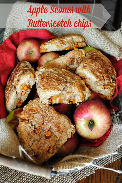 Apple scones with butterscotch chips |you-made-that.com