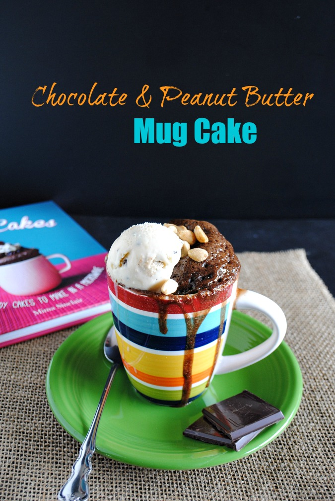 Chocolate & Peanut Butter Mug Cake |you-made-that.com
